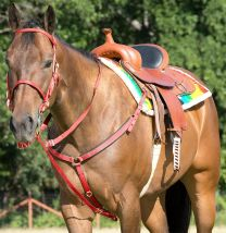 Mustang Bridle and Go Tack Set, RED