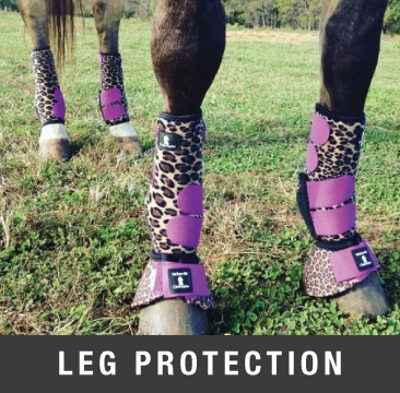 Leg and Hoof Protection