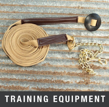 Horse Training Equipment