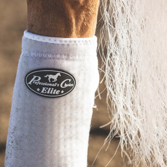 horse leg and hoof protection