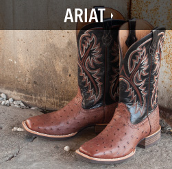 mens bootdaddy with ariat