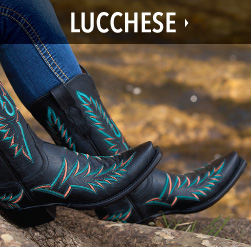 ladies bootdaddy collection with lucchese